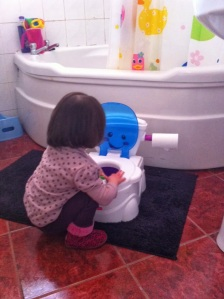 Mini inspecting the stand by potty.